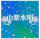 【EA紹介】山紫水明